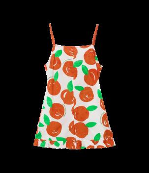 Salopeta cu clementine